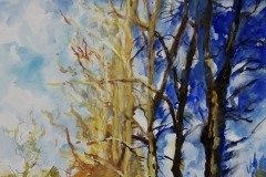 Yellow and Blue Trees