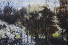 Waterlow Park Winter