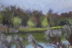 Gravel Pit Lake, Willows
